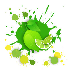 lime fruit logo watercolor splash design fresh vector image vector image