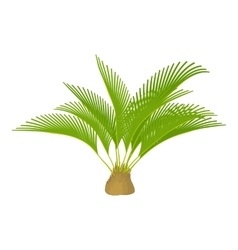 Small palm tree icon cartoon style vector