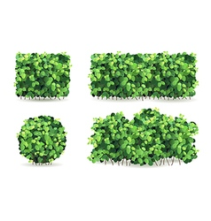 Set of bushes vector