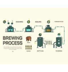 Beer brewing process infographic flat style vector