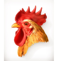 Rooster head realistic vector image vector image