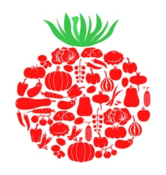 tomato on vegetables vector image