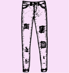Womens jeans vector