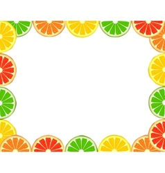 Citrus frame vector image