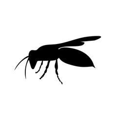 Wasp insect black silhouette animal vector