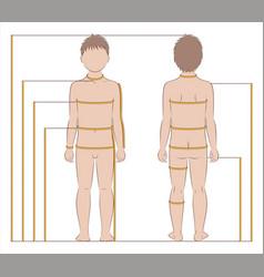 Childs body measurements vector