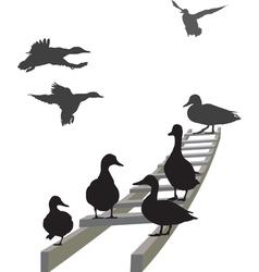 Mallard on a ladder vector image vector image