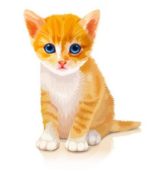 Cute orange kitten vector