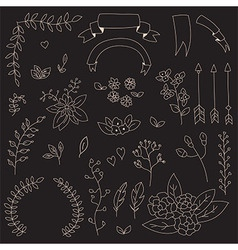 Hand drawn vintage flowers and floral elements vector image vector image