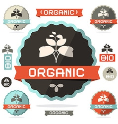 Organic Flat Design Retro Labels on White vector image vector image