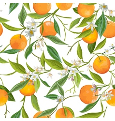 Seamless Pattern Orange Fruits Background Floral vector image