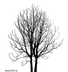 Tree branch winter dead bare forest art vector