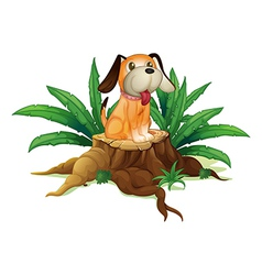 A cute puppy sitting above the wood vector