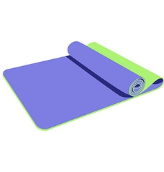 Yoga mat vector