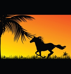 Horse in nature with palm vector