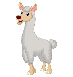 Cute lama cartoon vector