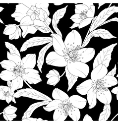 Hellebore floral foliage pattern white on black vector image vector image