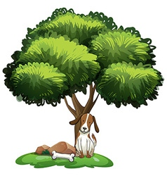 Dog under tree vector