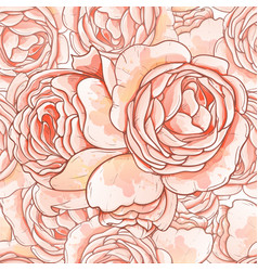 roses stylized vector image