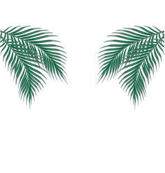 tropical green palm leaves on both sides isolated vector image vector image