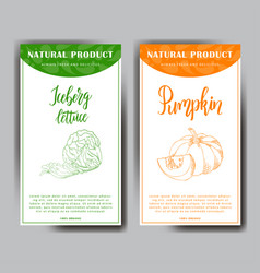 Vegetable food banner iceberg lettuce and pumpkin vector