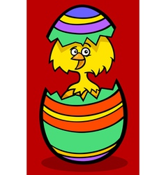Chick in easter egg cartoon vector