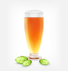 Beer glass with hop plant vector
