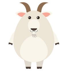 white goat on white background vector image vector image