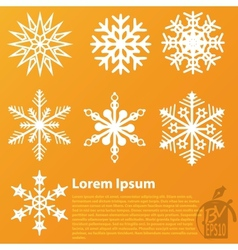Snowflakes pack set vector