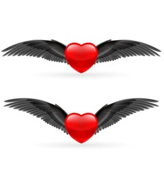 Two hearts with wings vector