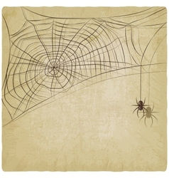 Vintage background with spider web vector