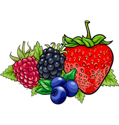 Berry fruits cartoon vector