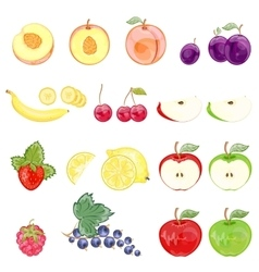 Set of isolated fruits and berries vector