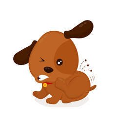 cute angry itchy dog scratches fleas off vector image