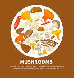 Edible species of mushrooms in messy heap inside vector