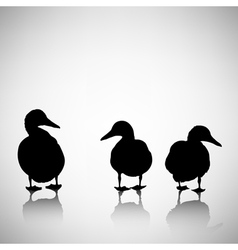 Silhouettes of ducks on a light background vector