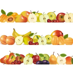 Three fruit design borders vector