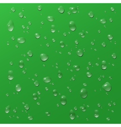 Water drops on green glass vector image