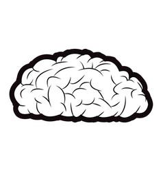 brain mind idea knowledge image outline vector image