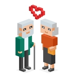 Isometric old family couple in love celebtrate vector image