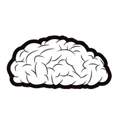 Brain mind idea knowledge image outline vector