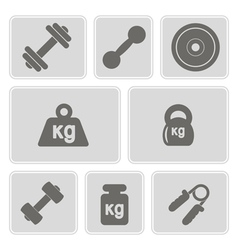 monochrome icons with weight vector image