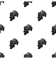 Acorns icon in black style isolated on white vector