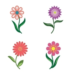 Flower icon set camomile chamomile daisy vector