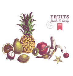 Hand drawn juicy fruits colorful border vector