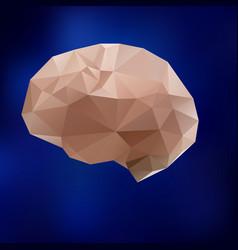 human brain triangle triangled brain vector image vector image