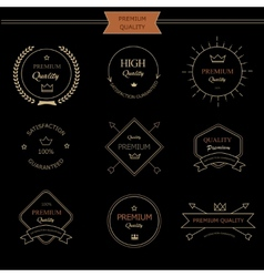 Set of premium quality vintage style elements vector image