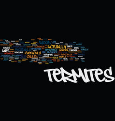 Termites text background word cloud concept vector