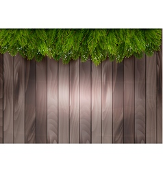 Christmas tree branches on a wooden backdrop vector image