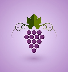 Red grape vector